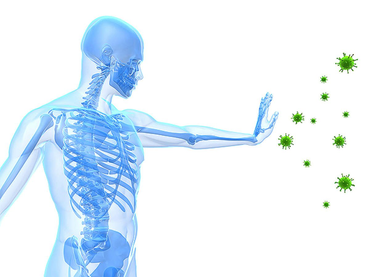 What is immune System in human body