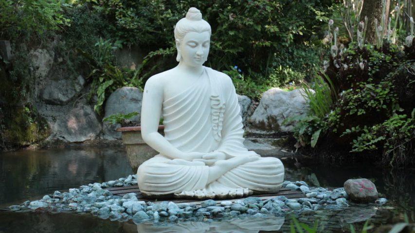 beautiful buddha statue torn by pakistani molvies